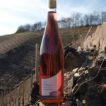 Rose Wein Mosel